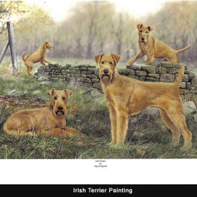 A painting of Irish terriers